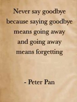 Never say goodbye 