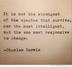 It is not the strongest of the speeieg that eurvive, nor the most intelligent, but the one most responsive to change. —Charleø Darwin