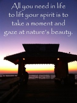 All you need in life 