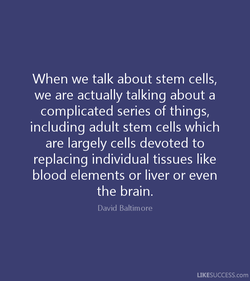 When we talk about stem cells, 