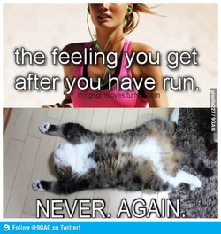. the feeling you get 