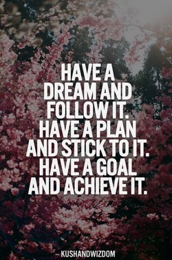 HAVEA 