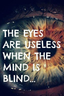 THE EY S 