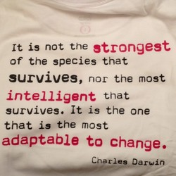 It is not the strongest 