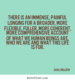 THERE IS AN IMMENSE, PAINFUL 