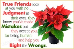True Friends look 