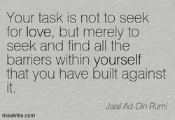 Your task is not to seek 