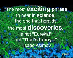 'The most exciting phrase 