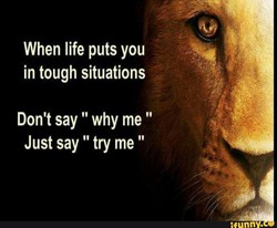 When life puts you 