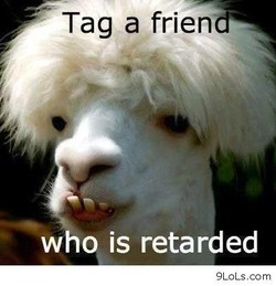 Tag a frien 