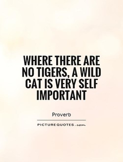 WHERE THERE ARE 