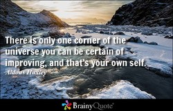 There nl one Orne BrainyQuote&