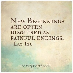 NEW BEGINNINGS 