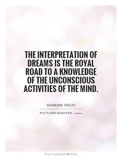 THE INTERPRETATION OF 