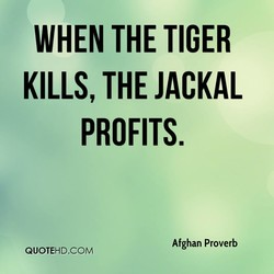 WHEN THE TIGER 