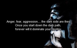 Anger, fear, aggression... the ddrk side are the Once you start down the dar path forever will it dominate your esti