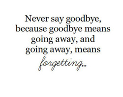 Never say goodbye, 
