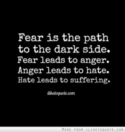 Fear is the path to the dark side. Fear leads to anger. Anger leads to hate. Hate leads to suffering. iliheloquotecom