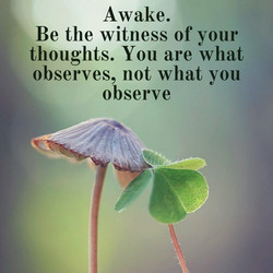 Awake. 
