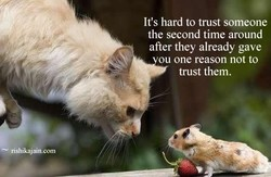 It's hard to trust someone 