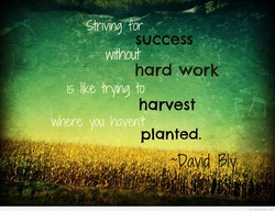 Striving or 
