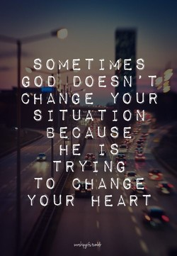 fit . 