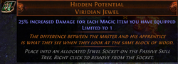 HIDDEN POTENTIAL 