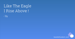 Like The Eagle 