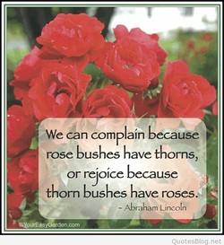 We can complain because 
