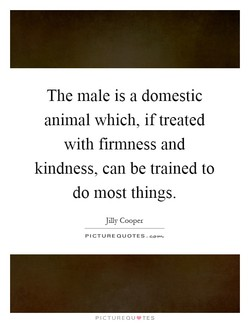 The male is a domestic 