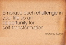 Embrace each challenge in 