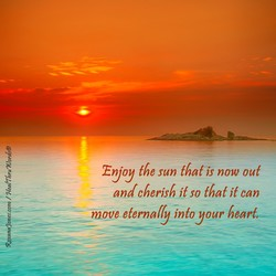 Enjoy the sun that-is now out 