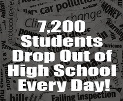 cat Q 
