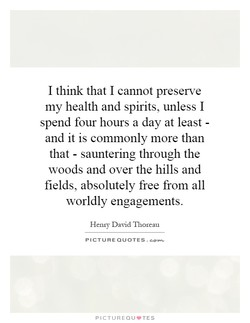 I think that I cannot preserve 