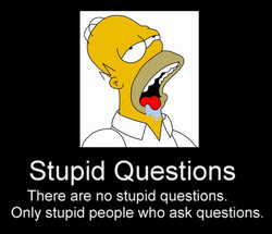 Stupid Questions 