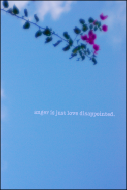 anger is just love disappointed.
