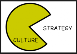 STRATEGY CULTURE