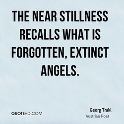 THE NEAR STILLNESS 