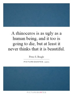 A rhinoceros is as ugly as a 