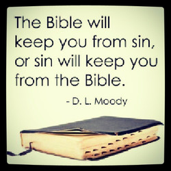 The Bible will 