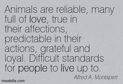 Animals are reliable, many 
