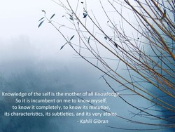 Knowledge of the self is the mother of all Knowle 