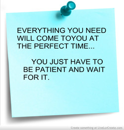 EVERYTHING YOU NEED 