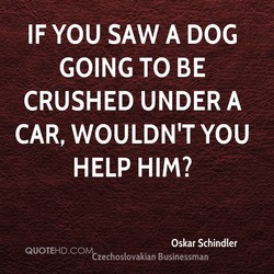 IF YOU SAW A DOG 