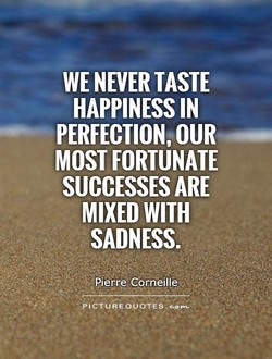 WE NEVER TASTE