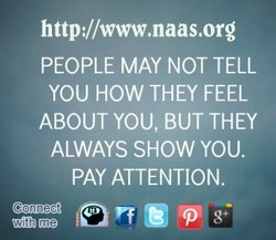http://www.naas.org 