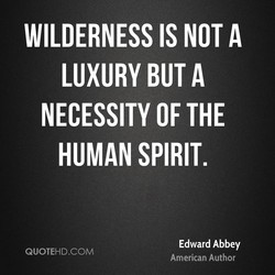 WILDERNESS IS NOT A 