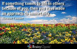 If somethinOomVSiofin others 