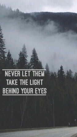 NEVER LET THEM 