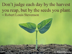 Don 't judge each day by the harvest 